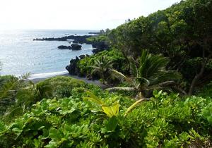 Black-Sand-Beach-Maui