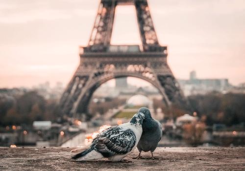 Luxury-honeymoons-paris