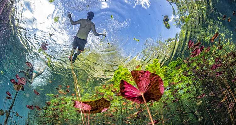 Mexico's-Riviera Maya-Cenote
